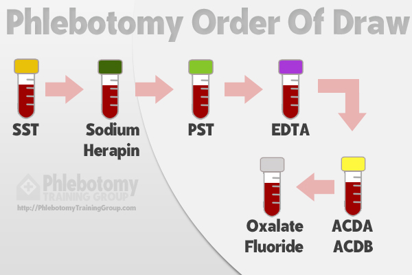 Chart explaining what is phlebotomy order of draw.